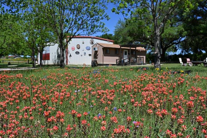 Last Stand TX Klein Peach Cottage