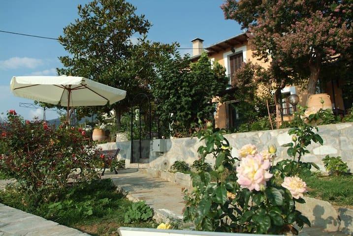 Villa Amalia - Zagora - Gästhus