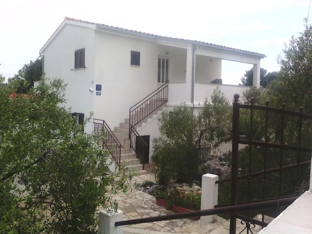 Apartment Oliva A3 (2+1 pers)  - Island Solta,Cro - Maslinica