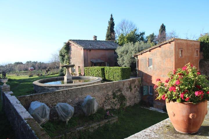 Villa antica nei Castelli romani - Grottaferrata - Dom