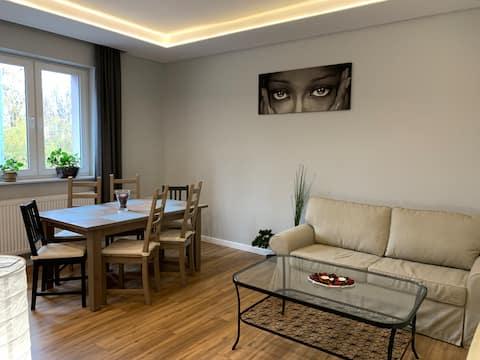 Gray apartment 50 m2