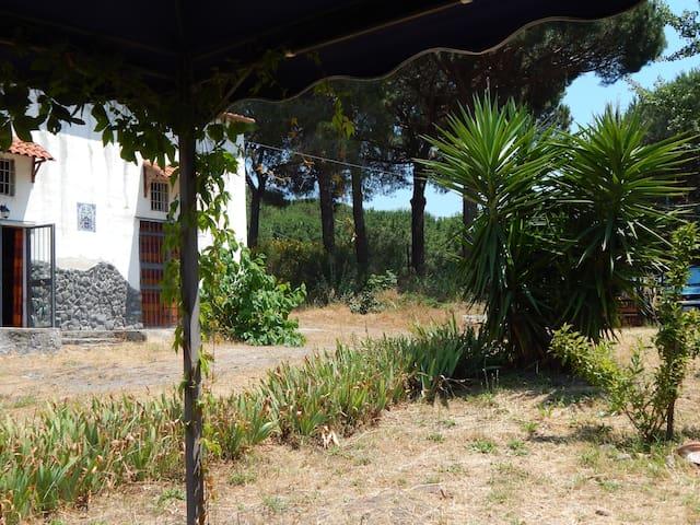 Casa vacanze nel Parco del Vesuvio - Torre del Greco - House