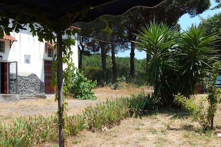 Casa vacanze nel Parco del Vesuvio - Torre del Greco - Hus