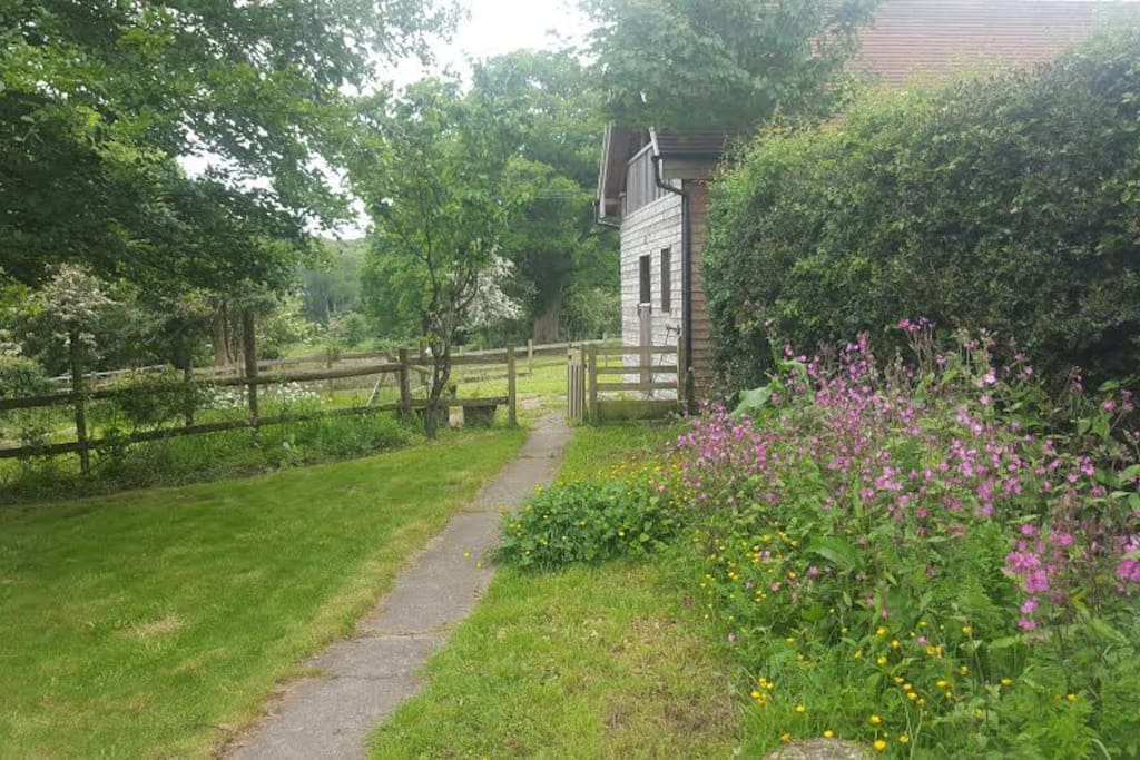 Back of the Garden Looking onto the Stables
