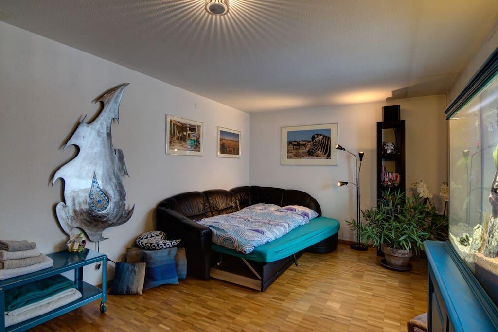 aquarium and TV, Music, free wifi