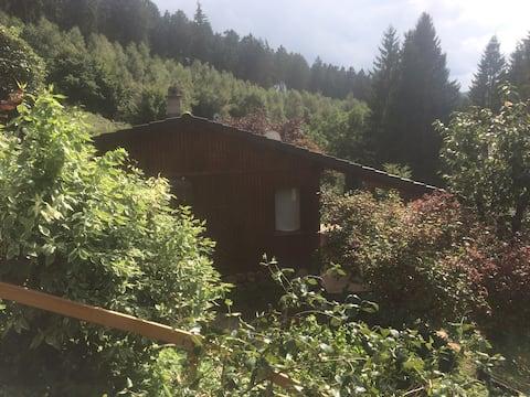 Gästehaus mitten im Wald -  nun mit neuer Terrasse