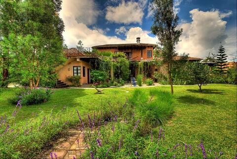 Beautiful Artist's Villa with views
