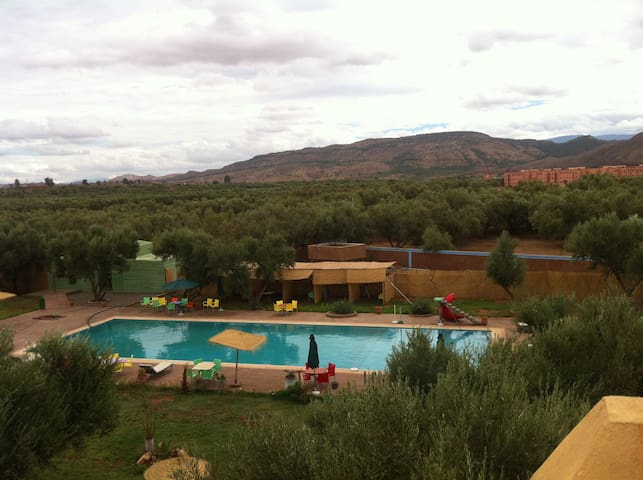 Garden and swimming pool view - Ait Ourir - Bed & Breakfast