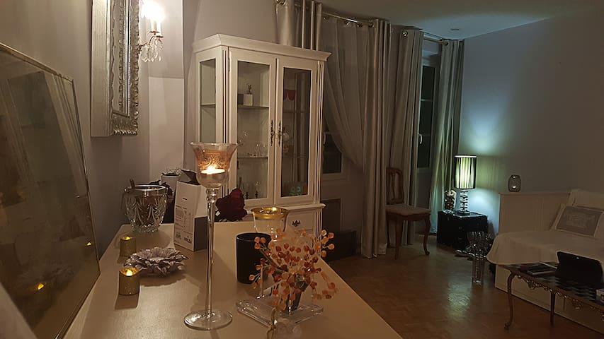 Charmant 2 pieces en plein coeur de Fontainebleau, - Fontainebleau - Apartment