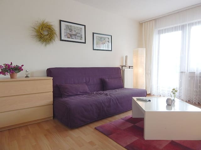 Apartmenthaus-Abendsonne OG - Koblenz - Appartement
