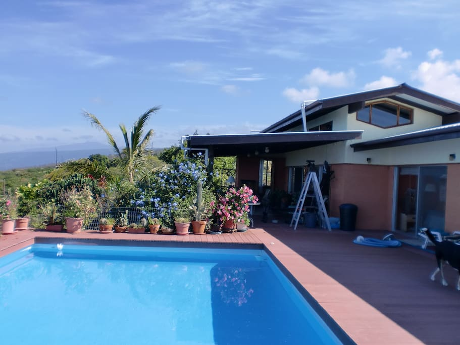 Main part of house showing pool and front covered lanai