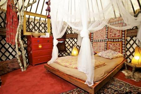 original old Afghani yurt  -cool - นูเรมเบิร์ก - กระโจมทรงกลม