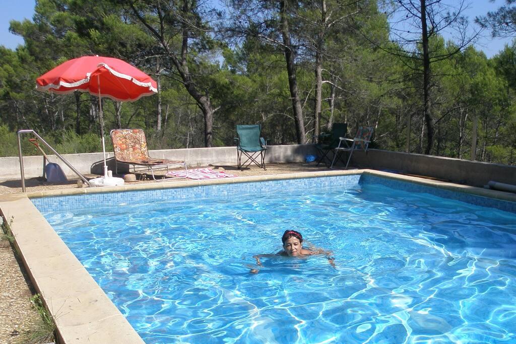 la piscine au milieu des pins