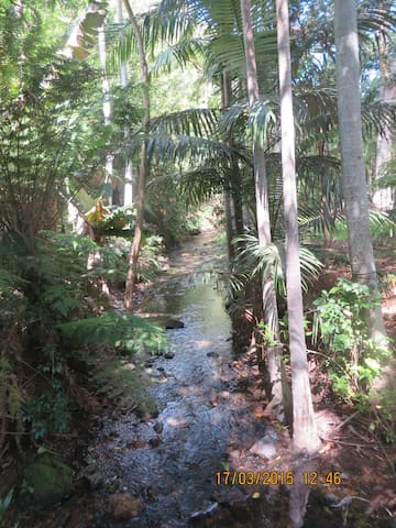 Secluded cottage on 5 acres,  5 mins CBD and beach - Korora