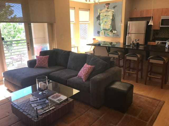 Upscale modern 1 bedroom fully private condo