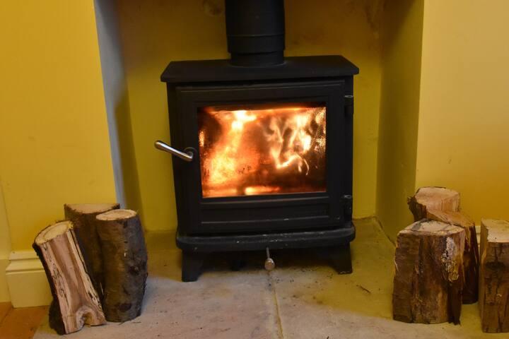 Chesney log burner