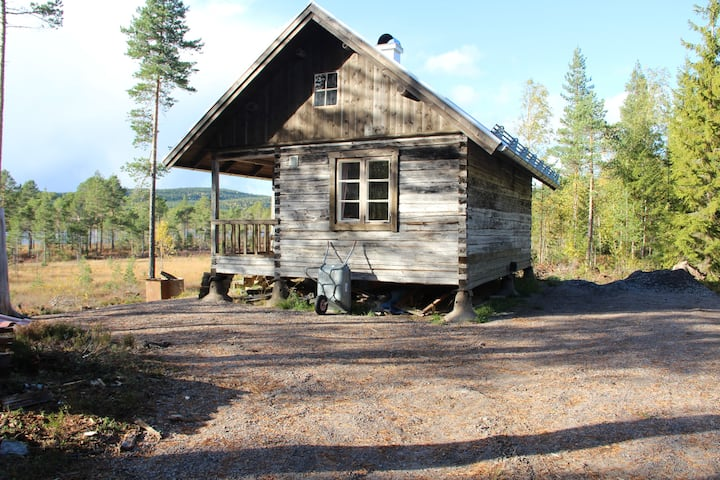 Charming cabin with lakeview in the swedish forest