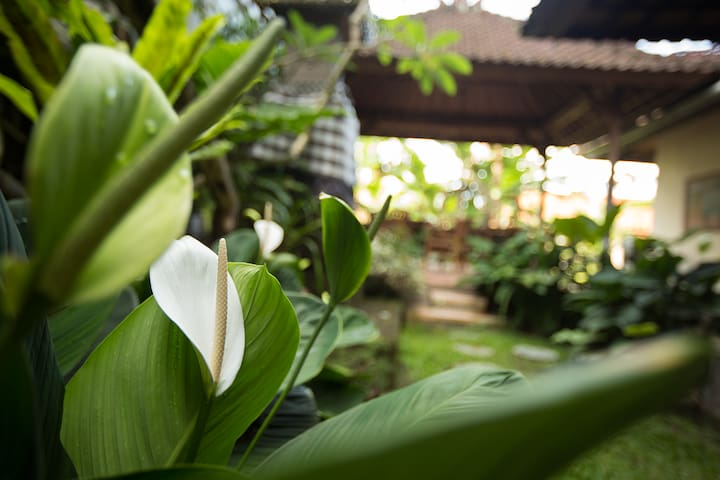 2 Bed - Main Street of Ubud - Close to it all!