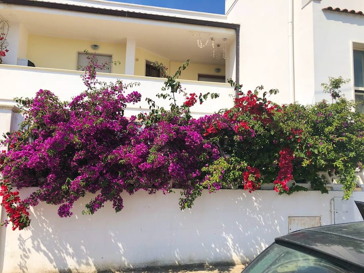 House with 2 bedrooms in Torchiarolo, with wonderful city view, enclosed garden and WiFi - 4 km from the beach