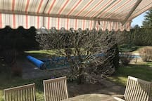 Awning eating area with large hedged in backyard