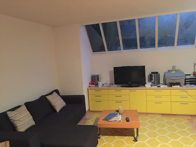 Basement TV and game room.  Couch folds out for additional guest(s).