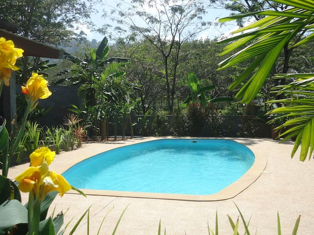 Nai Yang Loft Villa - private pool - Phuket - House