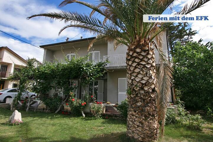 Domi 1. nice 3 rooms for 8 people - Novalja - Casa