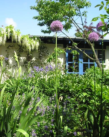Felicitas Studio met eigen terras - Bergen - Apartment