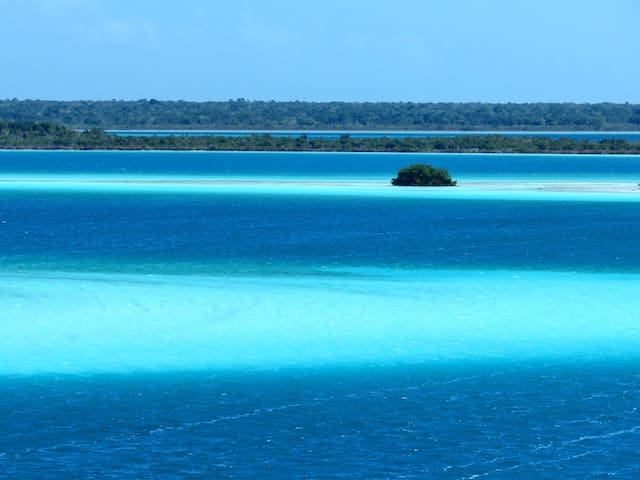 """Oasis Suites Bacalar """"Casa Aves"""" - Bacalar - Appartement"""