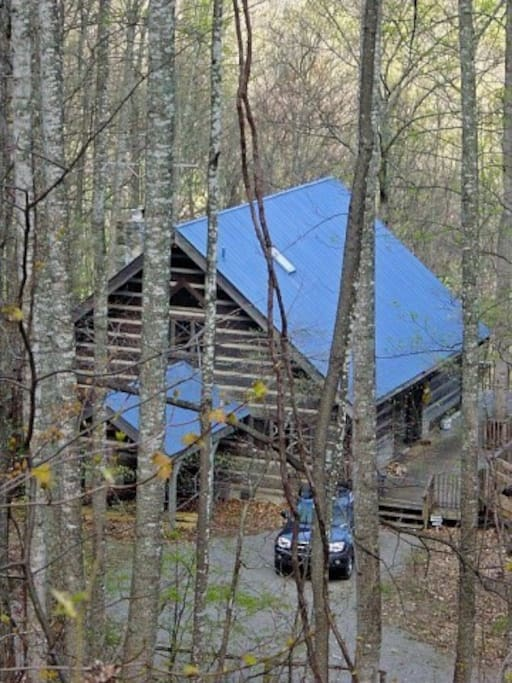 Overview of the cabin situated on 6 acres.
