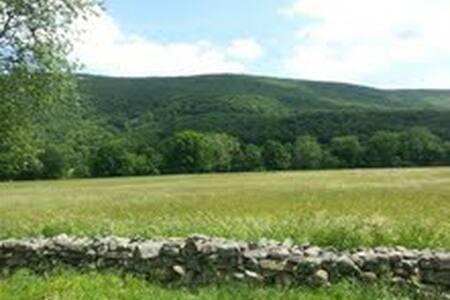 Mountain Retreat in the Schunemunk  - Monroe