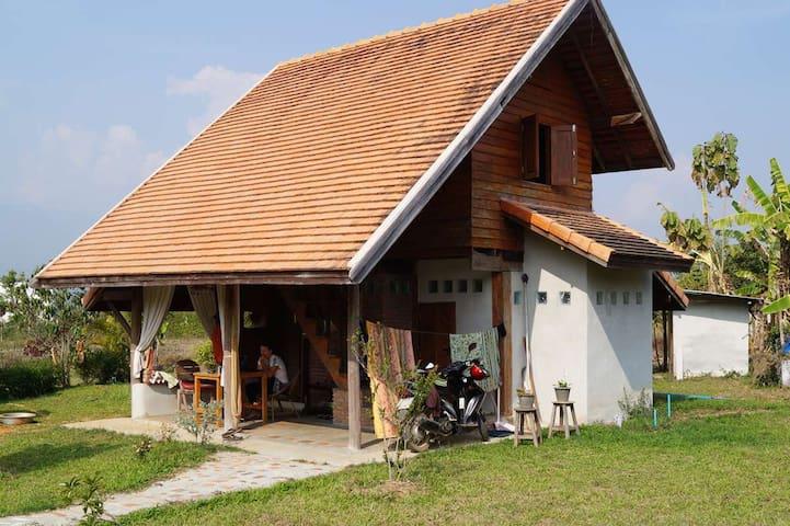 Hobbit House - Pai - House
