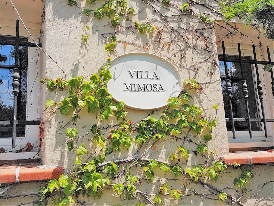 Welcome to Villa Mimosa