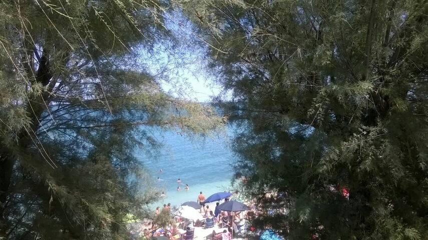 Casa vacanze  - Ruvo di Puglia