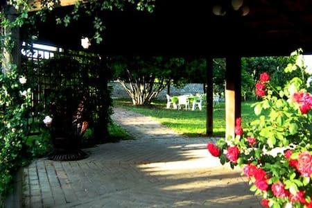 Casale Ara delle Rose Yellow Room - Rom