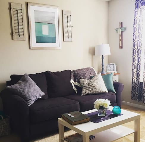 VACATION RENTAL FOR JUNE AND JULY! - College Station  - Apartment