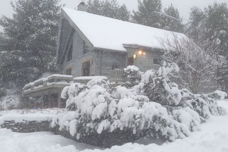 Cozy Chalet Great for Every Season! - Gilboa