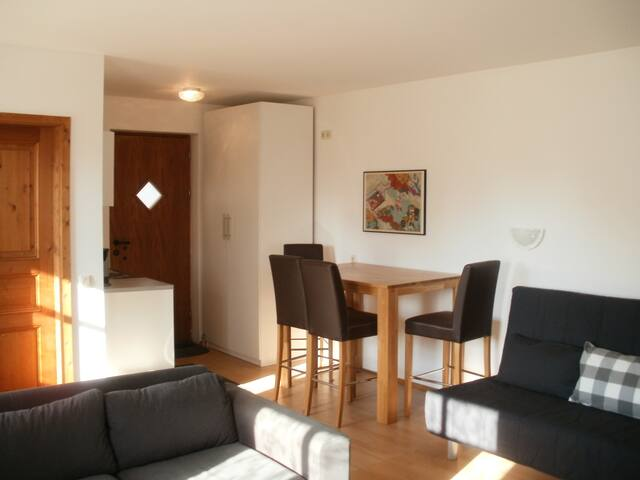 1 Zimmer Apartment max. 4 Pers. - Obergriesbach - Apartment