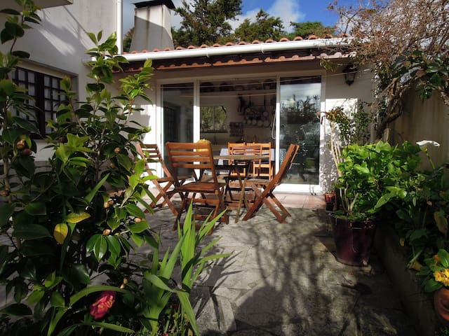 Country house near Ericeira beaches - Santo Isidoro - Huis