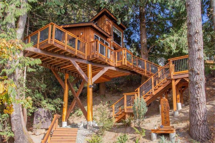 Owl's Perch Treehouse  Unique treetop escape