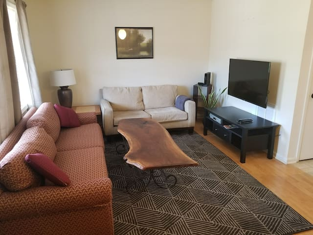 1BR Apartment in Downtown Durham w/ Pool