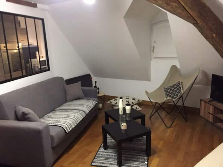 appartement f2 duplex atypique au calme en ville