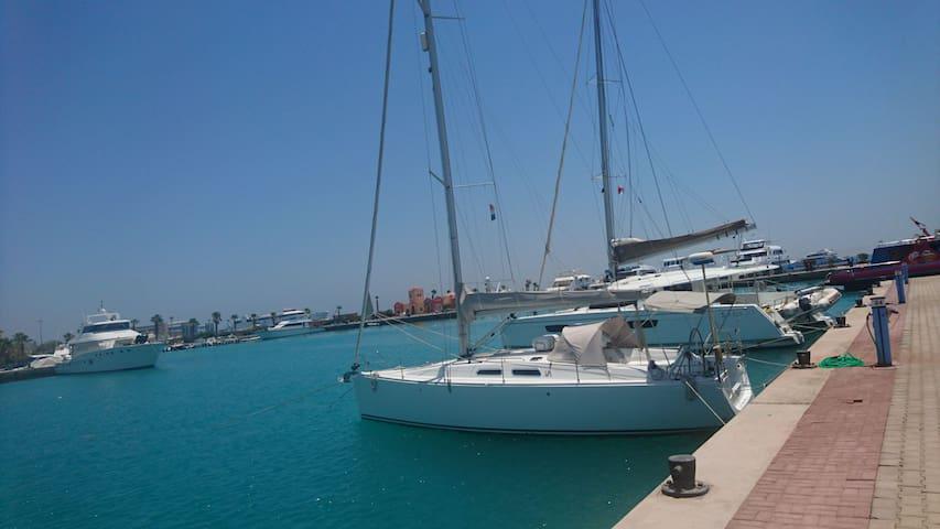 Malahy (The sail boat experience)