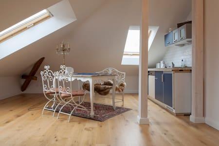 Dachwohnung in Blasewitzer Villa - Dresden - Villa