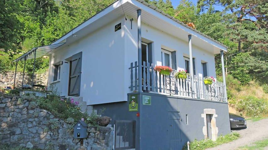 Petite maison au bord lac Chambon - Chambon-sur-Lac - Ev