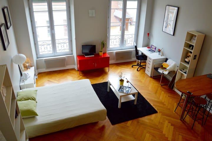 Studio chaleureux en hyper centre - Place Grenette - Grenoble - Apartment
