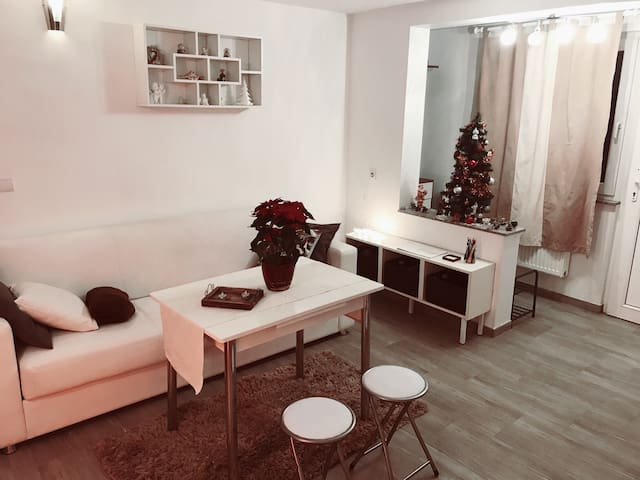 Cozy STUDIO near the city center Ljubljana