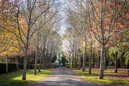 Woodland Studio & Farm | Exeter NSW | Pet Friendly