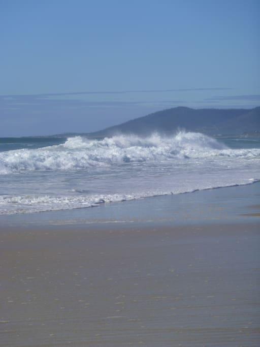 Sun, sand and surf. What more could you want? Oh, yes there are Fish too.