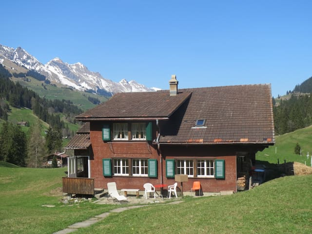 Lovly, Cosy House and Room - Adelboden - Wohnung